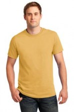 Gildan Ultra Cotton 100% Cotton T-Shirt