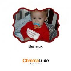 Benelux Small White
